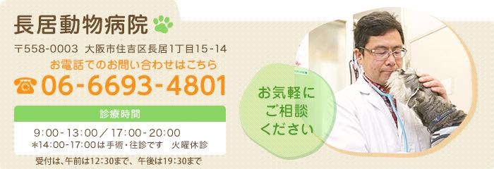 長居動物病院電話番号06-6693-4801