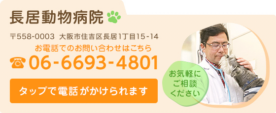 nagai-animal-hospital_21.jpg